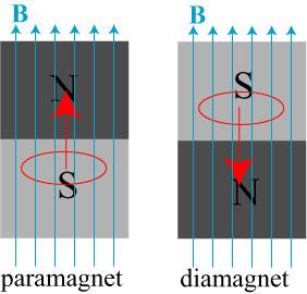 diamagnet