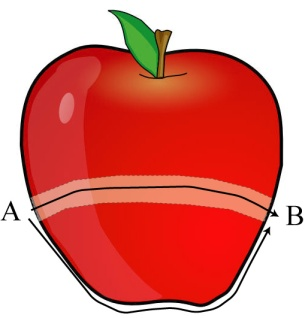apple_wormhole
