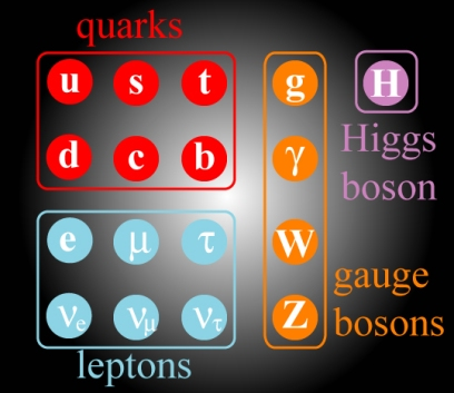 The standard model of particle physics, showing all fundamental particles (but not their antiparticles).