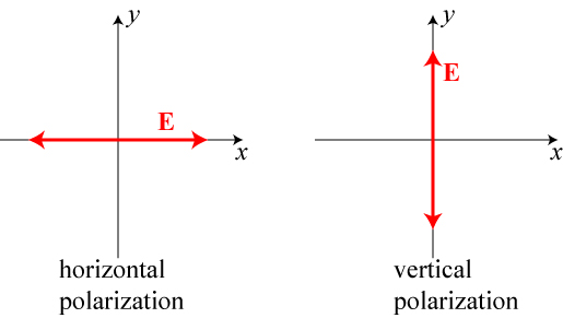 "Horizontal and vertical polarization head-on.  Of course, the field can oscillate along any direction, but any other direction can be written as a combination of these two.  For instance, a ""diagonal"" polarization would be equal parts horizontal and vertical."