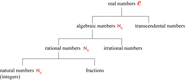 Hierarchy of number types.  (Adapted from Of Men and Numbers.)