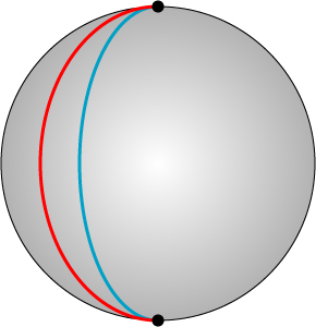 "The red and blue lines, which are ""straight"" on the sphere, intersect at the two black points at the poles."