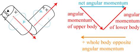 catangularmomentum