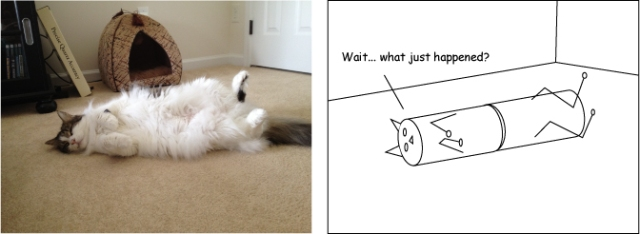 catcylinder