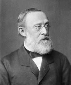 Rudolf Virchow, via Wikipedia.