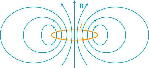 The field of a magnetic dipole.