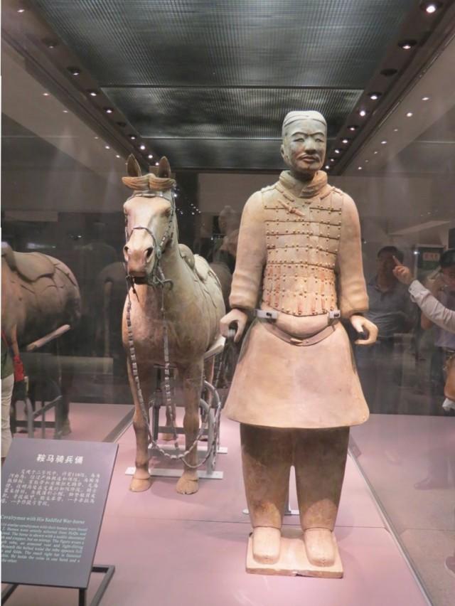 Cavalryman and horse.