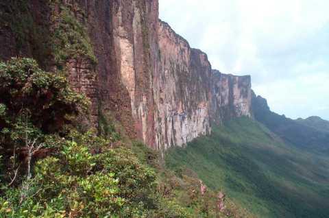 Mount Roraima, via Wikipedia.